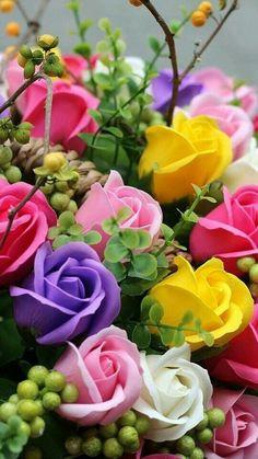 New Wall Paper Flores Rosas Colour 19 Ideas Beautiful Rose Flowers, Beautiful Flowers Wallpapers, Exotic Flowers, Amazing Flowers, Pretty Flowers, Colorful Flowers, Beautiful Beautiful, Rainbow Flowers, Romantic Flowers
