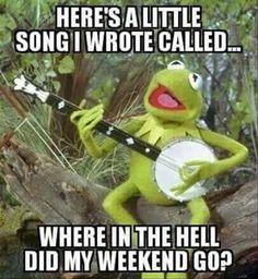 "Kermit is famous charter in cartoon movies.He is so funny character.These ""Monday Memes Kermit"" are all about to Kermit. Just read out these ""Monday Memes Kermit"" . Funny Sunday Memes, Funny Kermit Memes, Sunday Humor, Funny Jokes, Thursday Meme, Funny Friday, Monday Meme Work, Sunday Night Meme, Funny Quotes Lol"
