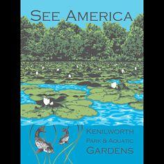Kenilworth Park and Aquatic Gardens by Candy Medusa, Black Dwarf Designs See America, Washington DC