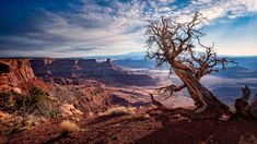 Grand Canyon, Landscapes, Earth, Places, Nature, Travel, Voyage, Scenery, Trips
