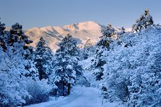 Winter photograph of a snowy Pikes Peak from Palmer Park, Colorado Springs, Colorado.