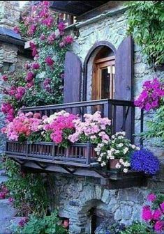 Lot's of flowers on this balcony