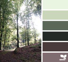 wooded tones - perfect color palette for woodland wedding inspiration Scheme Color, Earthy Color Palette, Colour Pallette, Colour Schemes, Color Combos, Color Patterns, Living Colors, Design Seeds, World Of Color