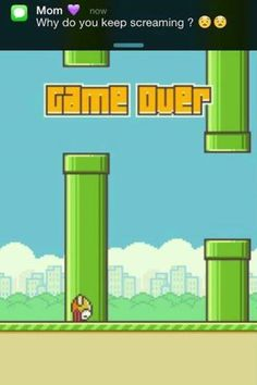 Flappy Bird  - www.meme-lol.com