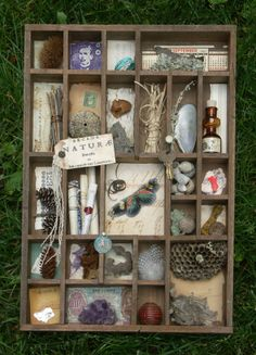 nature - I think I need to buy me one of these printer's trays!