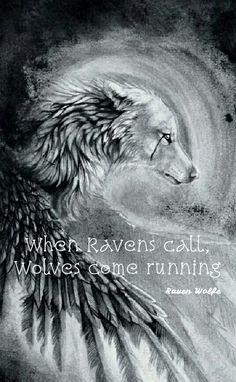 Ravens #OmegaQuotes Raven Wolfe