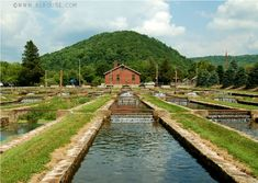 we would spend hours feeding fish.  Marion State Fish Hatchery - Marion, Virginia