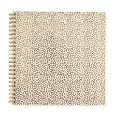 Album    Busy B Goldie