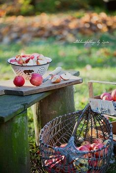 Country Farm, Country Life, Country Living, Apple Tree Farm, Apple Orchard, October Country, Apple Season, Apple Valley, Down On The Farm