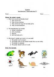 vertebrates and invertebrates worksheets grade 6 verte verte. Black Bedroom Furniture Sets. Home Design Ideas