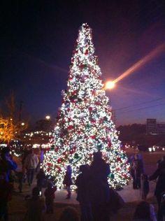 Hoover AL Christmas Tree 2013