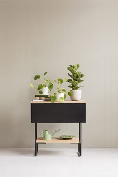 Plant stands for every garden - Buy online from Finnish Design Shop. Wide selection of contemporary design! Nordic Design, Planter Boxes, Contemporary Design, Outdoor Gardens, Interior, Green, Plants, Dreams, Window Boxes