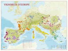Wine Maps - Rolled Map of the principal Wine growing areas of Europe Please note our gift wrap service is not available for this item.