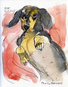 Franco Portinari - Giovanna Carbone - Visualizer - Storyboard Artist -Graphic design: I miei bassotti