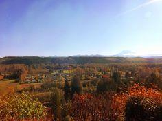 nature Fall <3