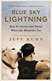 Blue Sky Lightning: How To Survive And Thrive When Life Blindsides You by Jeff Kuhn (Author) US Counseling Psychology, Lightning, Kindle, Hobbies, Ebooks, Survival, Medical, Author, Science