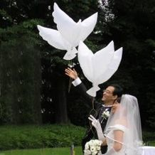 Helium dove-shaped balloons #love #wedding