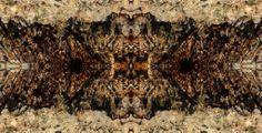 Una ilusión eterna, o por lo menos que renace a menudo en el alma humana, está muy cerca de ser una realidad (André Maurois)