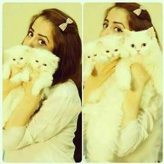 80 Best Cats Lover Images Cat Lovers Cats Girls Dpz