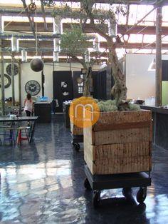 Microcrete Restaurante 1300 Taberna