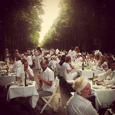 Diner en Blanc Dusseldorf