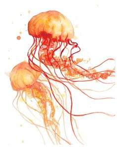 Orange Fire Jellyfish  Print  Abstract  Watercolor  by FuzzyLlamas