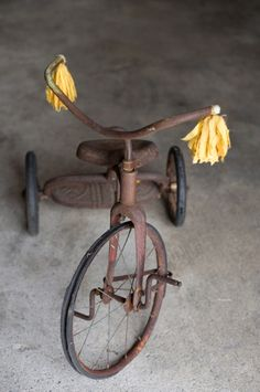 ...tricycle
