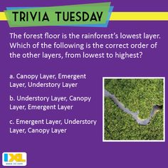 There are many layers to this Trivia Tuesday question! (Answer here: https://www.facebook.com/IXL/photos/a.366469926761158.83634.358584784216339/1359179470823527/?type=3&theater)