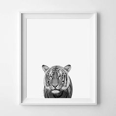 Tiger Print Tiger Photography Black And White by pinkbubblegumshop