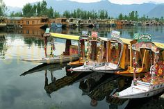 Enjoy the beauty of srinagar with us: Cheapticket.in