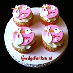 Birth cupcakes