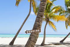 Zika Wedding Plans Contest