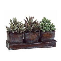Artificial Succulent Arrangements   Pretty, Artificial Succulents for Your Home