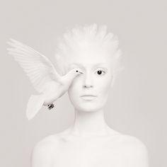 La photographe hongroise Flóra Borsi a fait cette série amusante de portraits qui mélangent des modèles maquillés pour reprendre des traits d'animaux qui viennent leur recouvrir un oeil de profil.