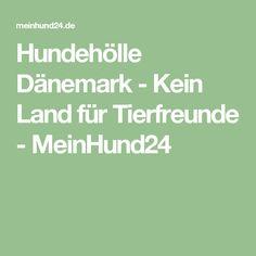 Hundehölle Dänemark - Kein Land für Tierfreunde - MeinHund24