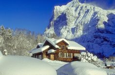 A Blog about life in Switzerland » Blog Archive » 'Now is the winter of our discontent'
