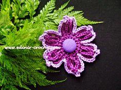 Flores Em Crochê 006 - Flor Em Correntes 001 - Edinir-Crochê