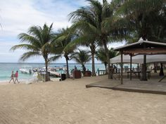 Great beaches on Roatan Vacation Destinations, Vacation Trips, Vacations, Carnival Liberty Cruise, Roatan, Beach Trip, Beaches, Travel Tips, Street View