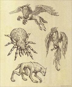 HP Art 3 By Sia Chan Buckbeak Aragog Phoenix Lupin As Werewolf