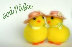 God Påske...Happy Easter.  Yellow chicks are the nonreligious symbol of Easter in Norway.  I have several of the small fake ones like these.
