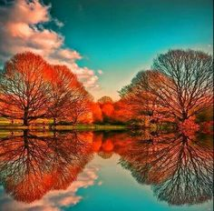 Beautiful reflection of Autumn trees in all their splendor.