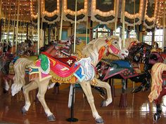 Carousel   by Alexandria McKensie  1915 Woodland park Zoo PTC