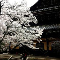 南禅寺 Nanzen-ji