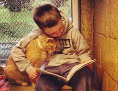 Boa noite! Trabalho voluntário mirim: http://abr.ai/1h9jZqC  Crianças leem p/ animais abandonados. Veja fotos! pic.twitter.com/IhxuzUcLQI