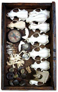 Naturalis: The taste of Petrol and Porcelain | Interior design, Vintage Sets and Unique Pieces www.petrolandporcelain.com Bone Box.