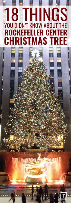 18 Things you did not know about The Rockefeller Center Christmas Tree - Bucket List Ideas Christmas Tree Bucket, Ribbon On Christmas Tree, Christmas Tree Decorations, Christmas Trees, Holiday Tree, Xmas, Woodland Christmas, Rustic Christmas, White Christmas