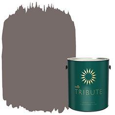 Amazon.com: KILZ TRIBUTE Interior Matte Paint and Primer in One, 1 Gallon, Chalk Suede (TB-28): Home Improvement