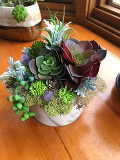 cactus planter Citrine infused artificial succulent planter succulent pot citrine and plants