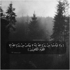 Do Not Lose Hope (Prophet Ya`qub Quote From Quran 12:87 – Surat Yusuf)    وَلَا تَيْئَسُوا مِنْ رَوْحِ اللَّهِ إِنَّهُ لَا يَيْئَسُ مِنْ رَوْحِ اللَّهِ إِلَّا الْقَوْمُ الْكَافِرُونَ  and do not lose hope in the mercy of Allah; indeed none lose hope in the mercy of Allah except the most ungrateful people.