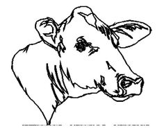 Cows go MOOOOOOO  - Free Printable Coloring and Activity Pages. Click for more fun pages for kids.